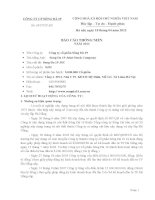 Báo cáo thường niên năm 2011 - Công ty Cổ phần Sông Đà 19