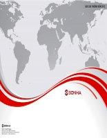 Báo cáo thường niên năm 2012 - Công ty cổ phần Quốc tế Sơn Hà