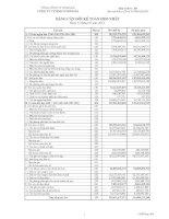 Báo cáo tài chính hợp nhất quý 1 năm 2014 - Công ty Cổ phần Simco Sông Đà