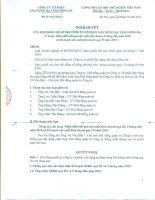 Nghị quyết Hội đồng Quản trị ngày 28-10-2010 - Công ty Cổ phần Xây dựng hạ tầng Sông Đà