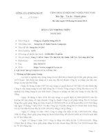Báo cáo thường niên năm 2010 - Công ty Cổ phần Sông Đà 19