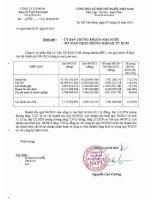 Báo cáo tài chính công ty mẹ quý 4 năm 2013 - Công ty Cổ phần Đại lý Vận tải SAFI