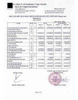 Báo cáo tài chính công ty mẹ quý 2 năm 2013 - Công ty Cổ phần Đại lý Vận tải SAFI
