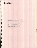 Báo cáo tài chính công ty mẹ quý 2 năm 2014 (đã soát xét) - Tổng Công ty cổ phần Xây lắp Dầu khí Việt Nam