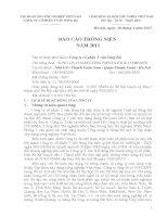 Báo cáo thường niên năm 2011 - Công ty Cổ phần Tư vấn Sông Đà