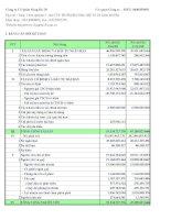 Báo cáo tài chính quý 2 năm 2009 - Công ty Cổ phần Sông Đà 19