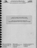 Báo cáo tài chính năm 2009 (đã kiểm toán) - Công ty Cổ phần Chứng khoán CAO SU
