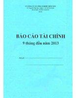 Báo cáo tài chính 9 tháng đầu năm 2013 - Công ty Cổ phần Công nghiệp Thủy sản