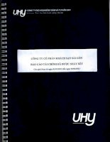 Báo cáo tài chính quý 2 năm 2013 (đã soát xét) - Công ty Cổ phần Khách sạn Sài Gòn