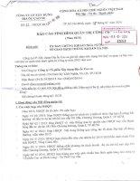 Báo cáo tình hình quản trị công ty - CTCP Xây dựng - Địa ốc Cao su