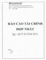 Báo cáo tài chính hợp nhất quý 2 năm 2015 - Công ty Cổ phần Địa ốc Sài Gòn Thương Tín