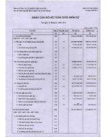Báo cáo tài chính quý 2 năm 2013 - Công ty Cổ phần Nhiên liệu Sài Gòn