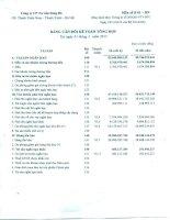 Báo cáo tài chính công ty mẹ quý 1 năm 2015 - Công ty Cổ phần Tư vấn Sông Đà