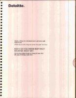 Báo cáo tài chính hợp nhất quý 2 năm 2014 (đã soát xét) - Tổng Công ty cổ phần Xây lắp Dầu khí Việt Nam