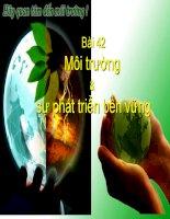 Môi trường  sự phát triển bền vững