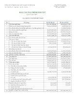 Báo cáo tài chính quý 4 năm 2009 - Công ty Cổ phần Xây lắp và Đầu tư Sông Đà