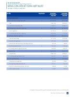 Báo cáo tài chính hợp nhất năm 2011 (đã kiểm toán) - Tập đoàn Dầu khí Việt Nam