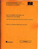 Báo cáo tài chính năm 2013 (đã kiểm toán) - Công ty Cổ phần Nhiên liệu Sài Gòn