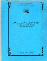 Báo cáo tài chính hợp nhất quý 2 năm 2011 - Công ty Cổ phần Sông Đà 6