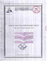 Báo cáo tài chính hợp nhất quý 3 năm 2012 - Công ty Cổ phần Sông Đà 2