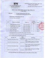 Báo cáo tình hình quản trị công ty - Công ty Cổ phần Khoáng sản Sài Gòn - Quy Nhơn