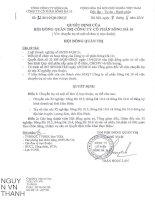 Nghị quyết Hội đồng Quản trị - Công ty Cổ phần Sông Đà 10