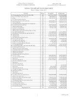 Báo cáo tài chính hợp nhất quý 4 năm 2013 - Công ty Cổ phần Simco Sông Đà