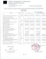 Báo cáo tài chính hợp nhất quý 1 năm 2010 - Công ty Cổ phần Đại lý Vận tải SAFI