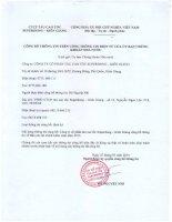 Báo cáo tài chính năm 2013 (đã kiểm toán) - Công ty Cổ phần Tàu cao tốc Superdong – Kiên Giang
