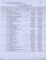 Báo cáo tài chính quý 1 năm 2011 - Công ty Cổ phần Nhựa Rạng Đông