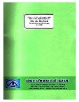Báo cáo tài chính năm 2007 (đã kiểm toán) - CTCP Đầu tư Xây dựng và Phát triển Hạ tầng Viễn thông