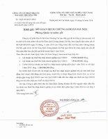 Báo cáo tài chính công ty mẹ quý 1 năm 2016 - Công ty Cổ phần Địa ốc Sài Gòn Thương Tín