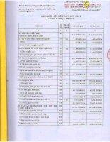 Báo cáo tài chính hợp nhất quý 4 năm 2012 - Công ty cổ phần Địa ốc Dầu khí