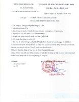Báo cáo tài chính quý 4 năm 2015 - Công ty Cổ phần Sông Đà 7.04