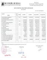 Báo cáo KQKD quý 4 năm 2011 - Công ty Cổ phần Mía đường Nhiệt điện Gia Lai