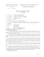 Báo cáo thường niên năm 2008 - Công ty Cổ phần Sông Đà 19