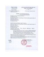 Báo cáo tài chính công ty mẹ quý 1 năm 2015 - Công ty Cổ phần Sơn Hà Sài Gòn