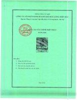 Báo cáo tài chính hợp nhất năm 2010 - Công ty Cổ phần Kinh doanh Khí hóa lỏng Miền Bắc