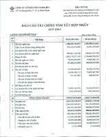 Báo cáo tài chính hợp nhất quý 2 năm 2011 - Công ty Cổ phần Xây dựng số 5