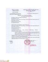 Báo cáo tài chính quý 2 năm 2015 (đã soát xét) - Công ty Cổ phần Sơn Hà Sài Gòn