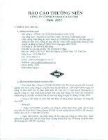 Báo cáo thường niên năm 2012 - Công ty Cổ phần Sadico Cần Thơ