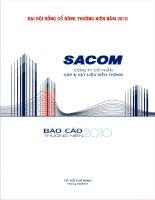 Báo cáo thường niên năm 2009 - Công ty Cổ phần Đầu tư và Phát triển Sacom