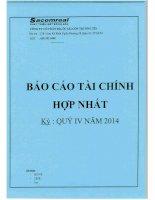 Báo cáo tài chính hợp nhất quý 4 năm 2014 - Công ty Cổ phần Địa ốc Sài Gòn Thương Tín