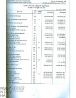 Báo cáo tài chính hợp nhất quý 1 năm 2014 - Công ty cổ phần Bia Thanh Hóa