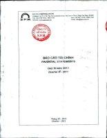 Báo cáo tài chính quý 3 năm 2011 - Công ty Cổ phần S.P.M