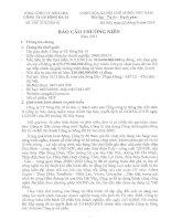 Báo cáo thường niên năm 2013 - Công ty Cổ phần Sông Đà 10