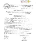 Báo cáo tài chính hợp nhất năm 2013 (đã kiểm toán) - Tổng Công ty cổ phần Xây lắp Dầu khí Việt Nam