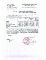 Báo cáo tài chính hợp nhất quý 2 năm 2012 - Công ty Cổ phần Đại lý Vận tải SAFI