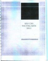 Báo cáo thường niên năm 2011 - Công ty cổ phần Chứng khoán Hoàng Gia
