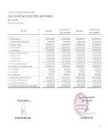Báo cáo KQKD quý 1 năm 2013 - Công ty cổ phần Mía đường Thành Thành Công Tây Ninh